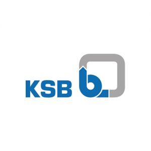 K.S.B. Pumps Company Ltd.